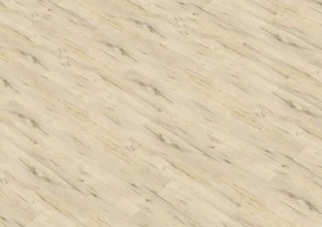 Borovice bílá – rustikal