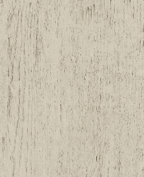 Concrete wood white
