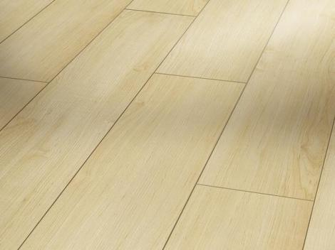 Javor struktura dřeva
