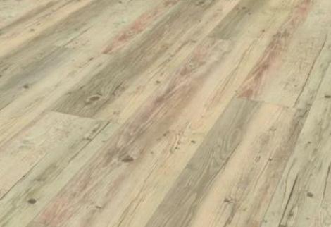Pinie bíle olejovaná struktura uříznutého dřeva