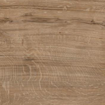 Featured Oak SF3W2533