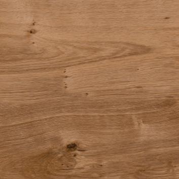 English oak SF3W2498