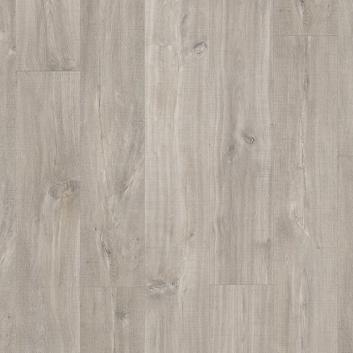 Kaňonovitý dub šedý s řezy pilou BACL40030
