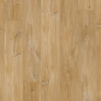 Kaňonovitý dub přírodní BACL40039