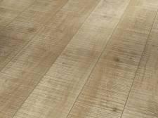 Dub řezaný přírodní olejovaný struktura uříznutého dřeva